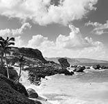 rhums-barbades-neptune.jpg